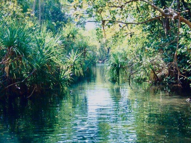 Sorgenti d'acqua termale Northern Territory Australia