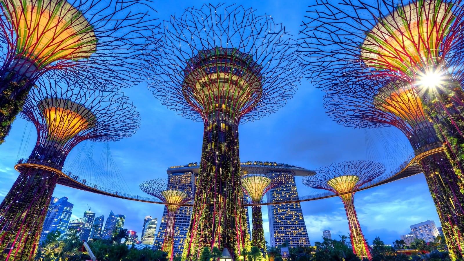 I super trees dei gardens by the bay di Singapore